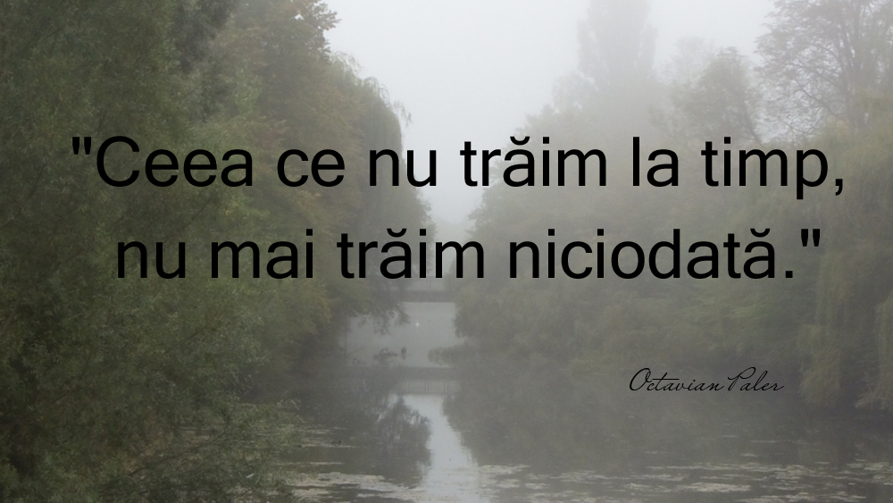 citate octavian paler despre viata