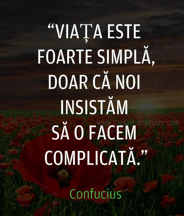 viata este foarte simpla citat