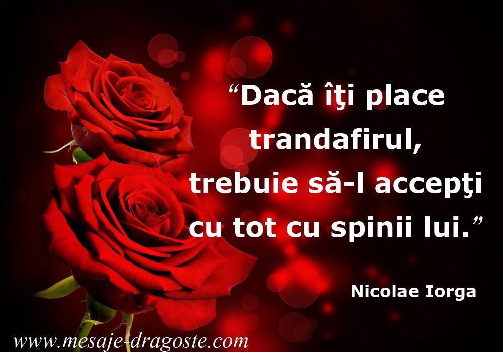 mesaj de dragoste trandafiri