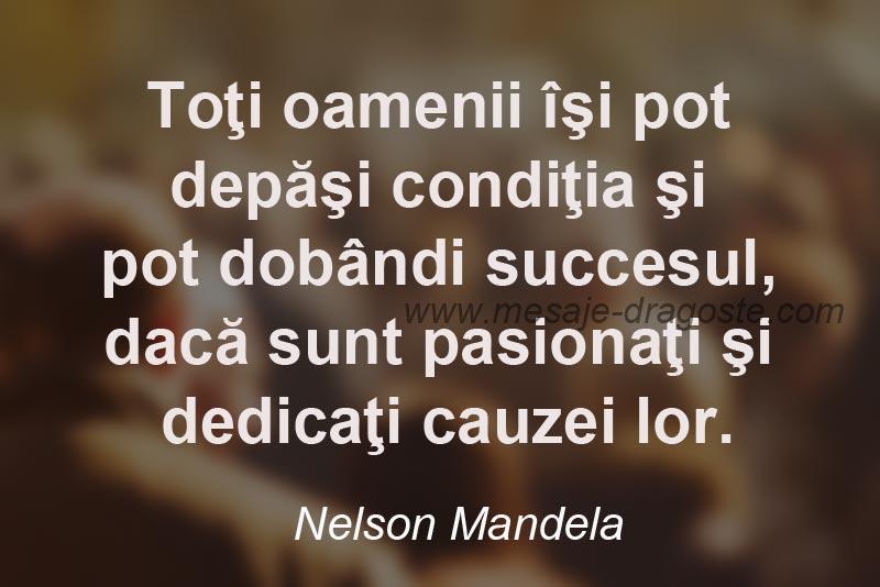 citate despre succes