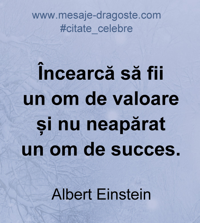 citate om de succes